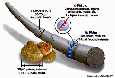 Particulate sizes